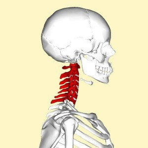 pinched nerve car accident lawyer St. Louis