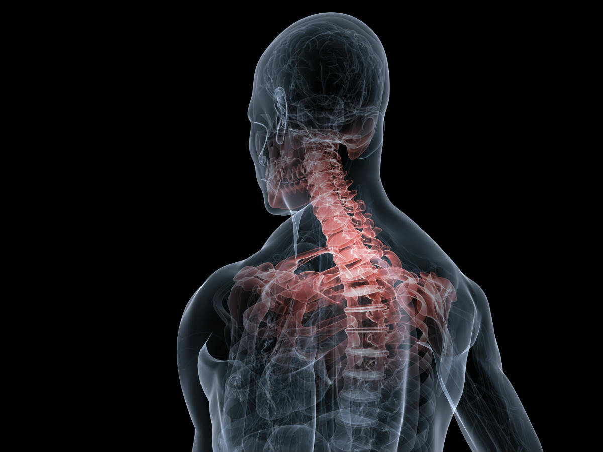 spine injury lawyer