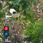St. Louis Auto Crash Lawyers – Red Light Cameras Effective in Saving Lives