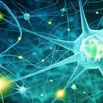 Neurological Issues Arising from a Car Accident