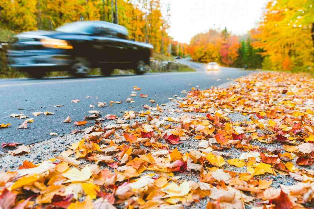 car driving in fall weather